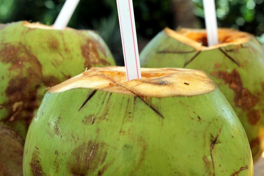 FIFY STORE Cet été, craquez pour la noix de coco!